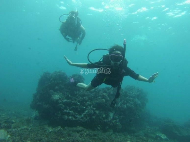 Descubriendo el mundo  marino de Islas Marietas
