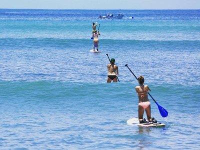 Paddle board rental in Punta Mita 1 day