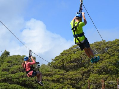 The Adventures Group Canopy