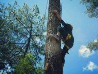Tulimán Ecotourism Park with Tree Climbing