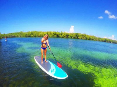 Stand Up Paddle through jungle and mangroves Cancun 2 hours