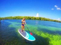 Stand Up Paddle por selva y manglares Cancún 2 hrs