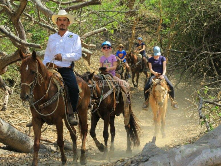 Paseo a caballo por la jungla