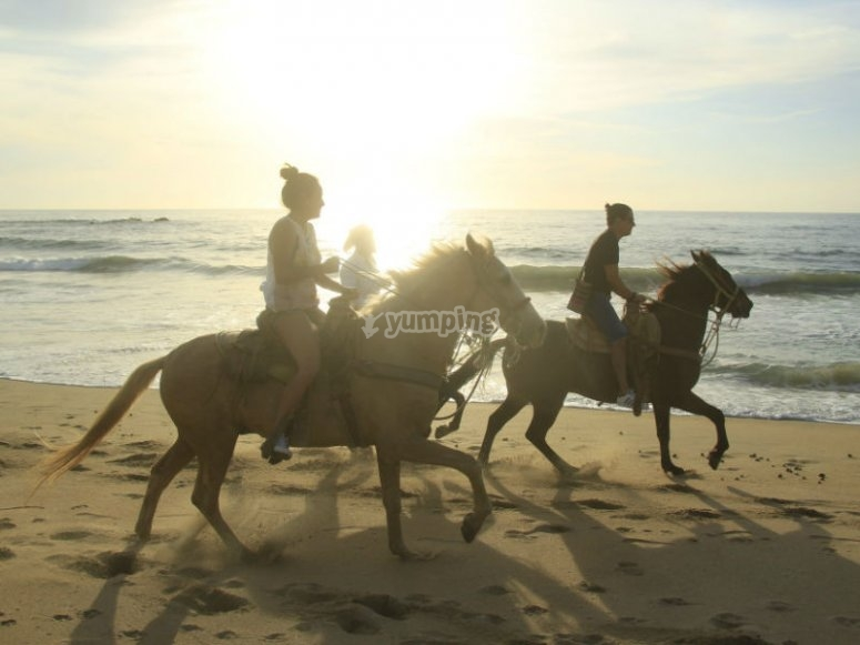 Spectacular horseback riding tour along the beaches of the Mexican Pacific