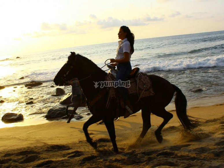 Feel the freedom of riding on the beach