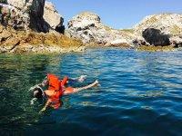 Tour de snorkel a las Islas Marietas