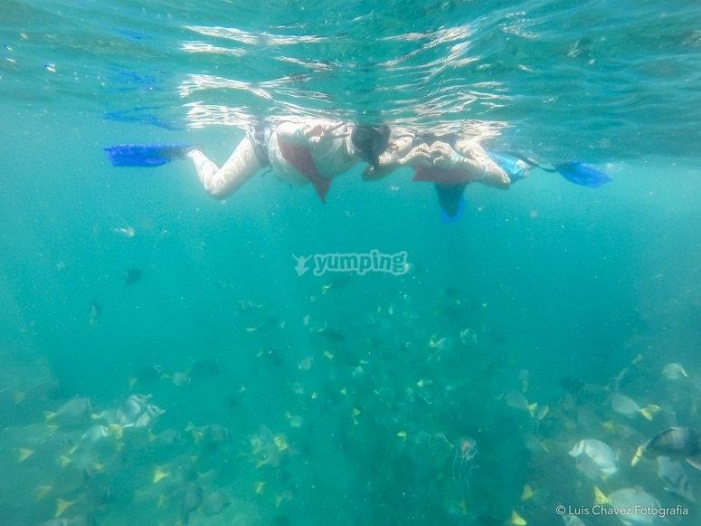Gran experiencia bajo el agua