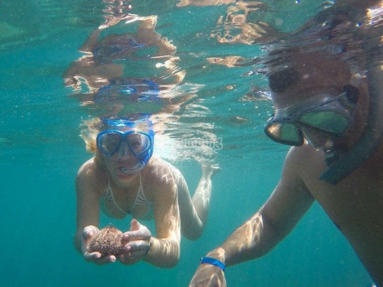 Aventura de snorkel en Puerto Vallarta