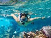 Enjoy this underwater adventure