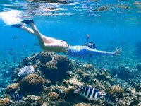 Snorkeling tour in Puerto Morelos