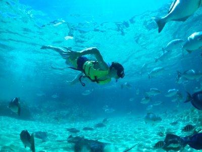 Selvática Snorkel