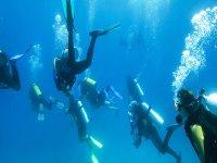 Inmersion en grupo