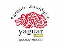 Yaguar Xoo Zoológicos