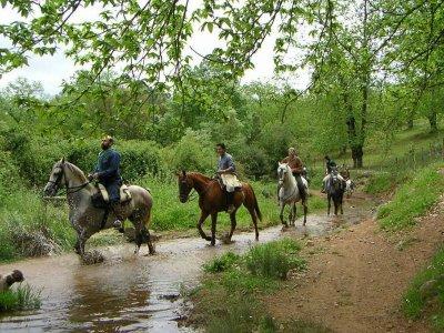 Ruta a caballo en Mazamitla 3 horas