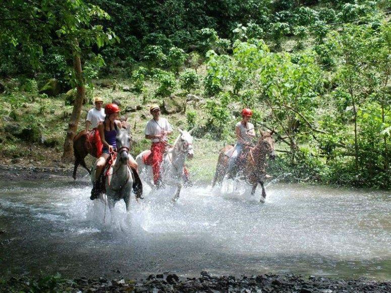 Aventurate con un paseo a caballo