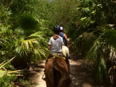 Horseback riding through the jungle and Maroma Beach 1.5 hours