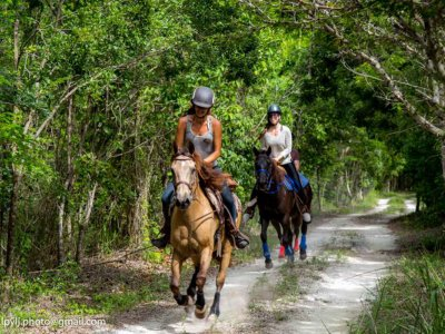 Private horseback ride in Playa Maroma 1.5 hours