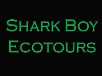 Shark Boy Ecotours