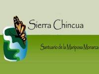 Sierra Chincua Caminata