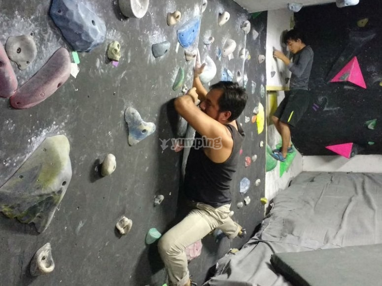 Find your passion in our Climbing Walls