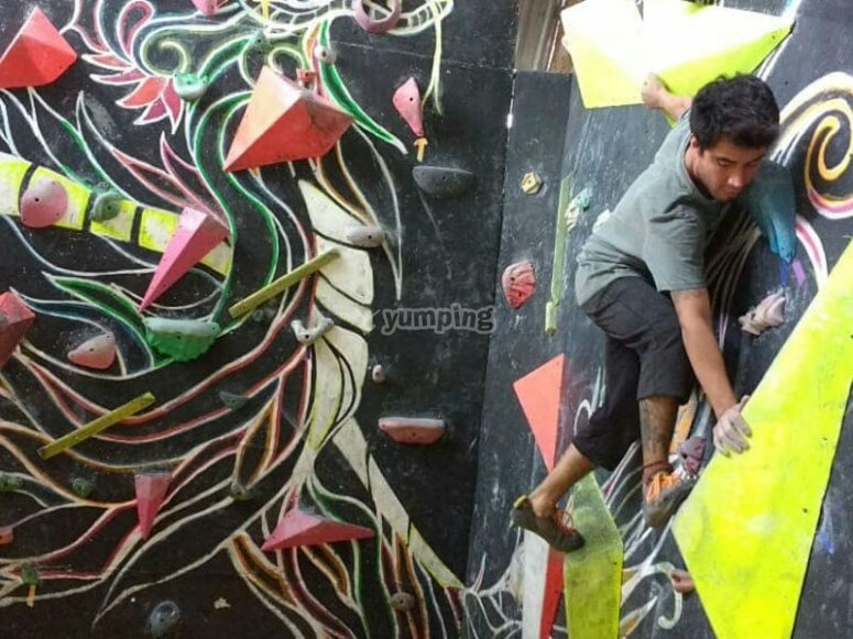 Live the adventure of climbing on our walls