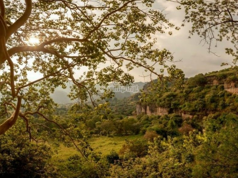 Enjoy beautiful natural landscapes