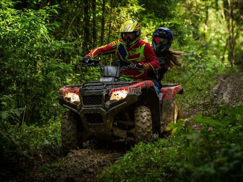 Route through the Malinalco jungle