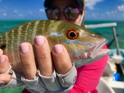 Shared fishing in Puerto Morelos with food 4h