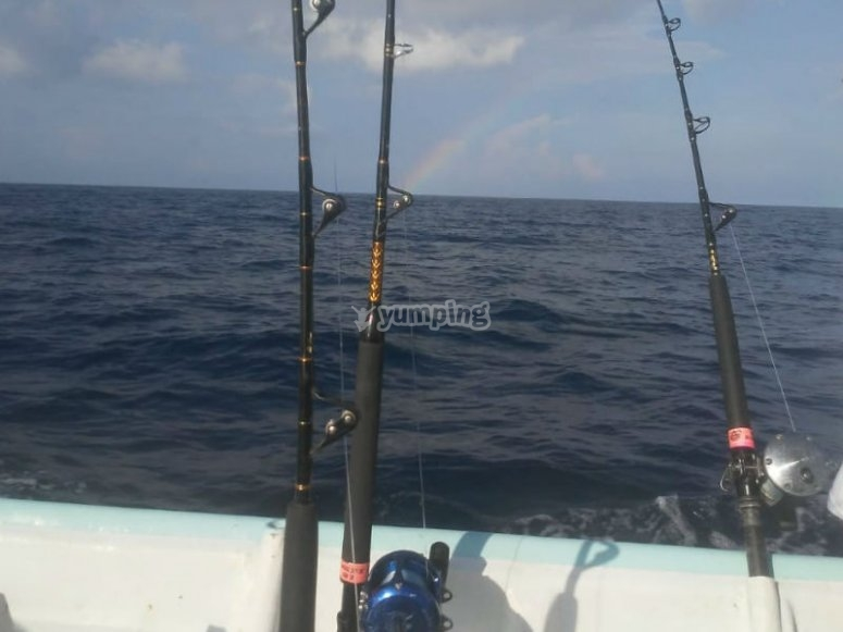 We provide you with all the equipment for your fishing