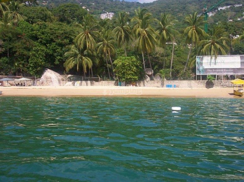 Playa de Puerto Marqués con su hermosa vegetación