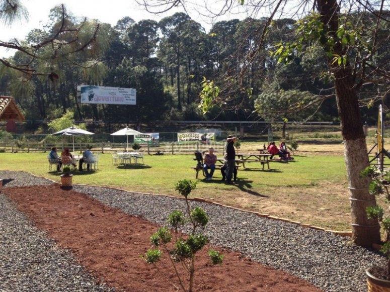 Nuestras instalaciones al aire libre