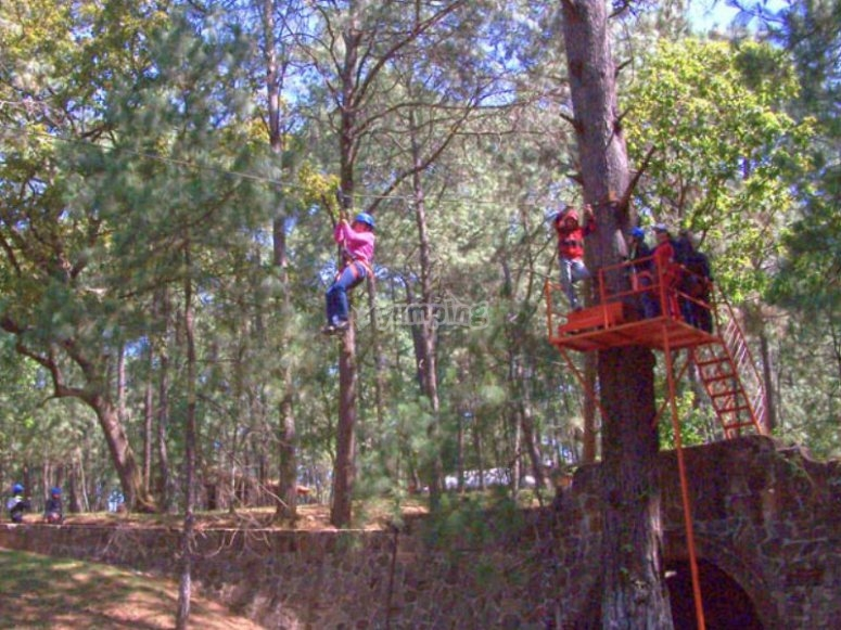 Enjoy our zip lines in the park