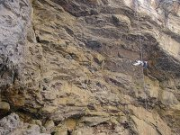 Rappel with professionals