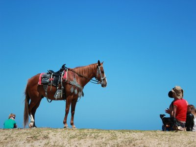 Horseback riding for couple in Tepoztlán 1.5 hours