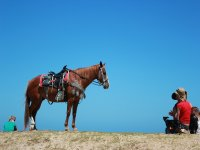 Guided horse riding routes