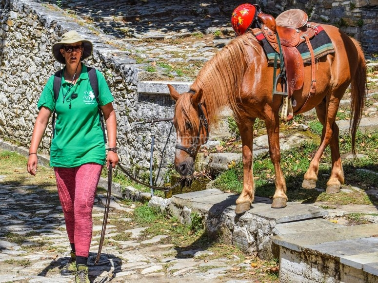 Tours guiados a caballo