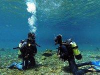 Curso PADI Open Water Diver en Cuernavaca 2 días