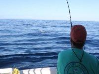 Monitor pescando desde el barco