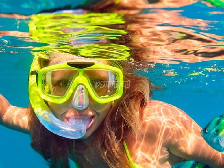 Enjoy snorkeling during our trips