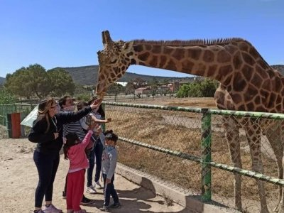 General access to the zoo in Pachuca for children