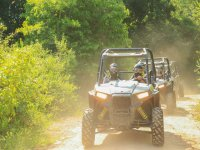 Buggy experience with family