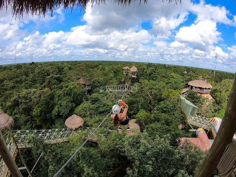Crossing the Caribbean jungle