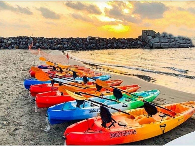 Our fleet of kayaks