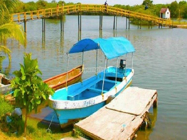 Boat ride through the mangroves of Laguna Mandinga