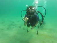 Dive discovery in Huatulco 3 hours