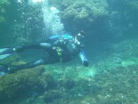 Night diving trip in Huatulco 3 hours