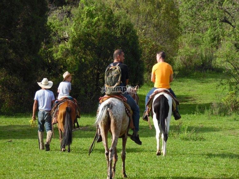 Relájate con una ruta a caballo por los alrededores de Tepoztlan