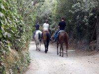 Disfruta de un tranquilo paseo a caballo