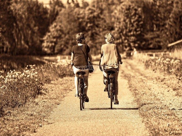 Ciclismo en compañía