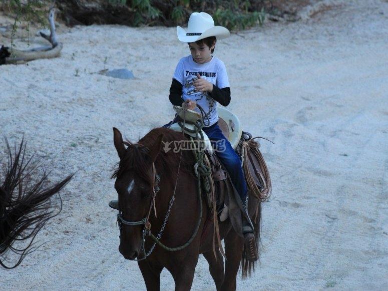 Ruta a caballo en Los Cabos para chicos y grandes